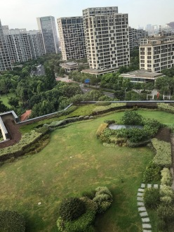 rooftop garden at the intercontinental hotel