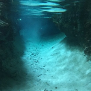 cenote (photo by Nichole Clark)