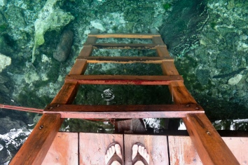 ladder view